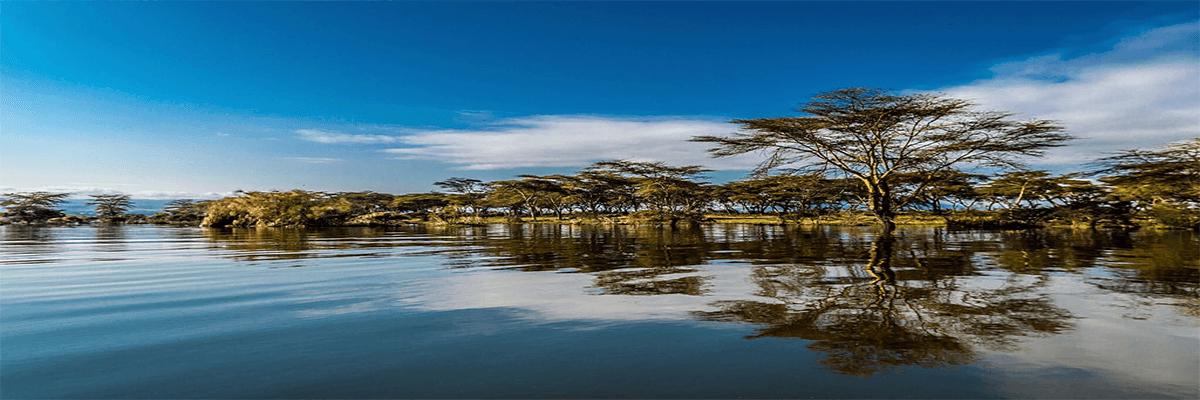 Lake Naivasha Park Millennial Tours