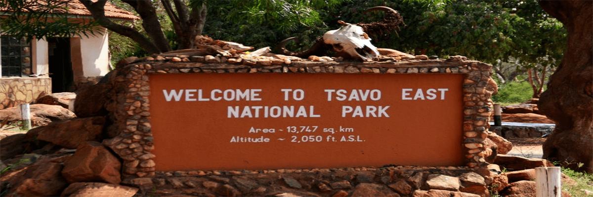 Tsavo National Park Millennial Tour